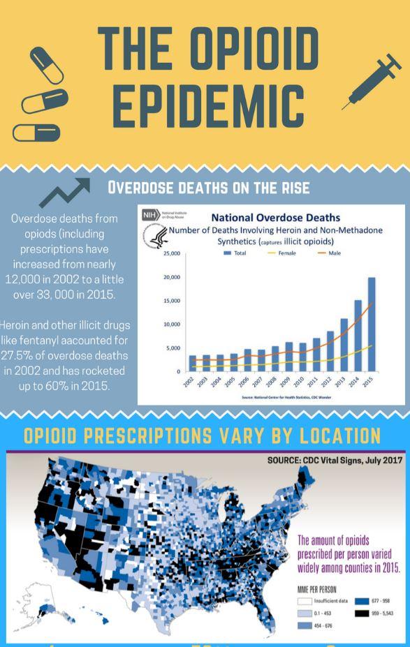 The Opioid Epidemic Monroe County Infographic