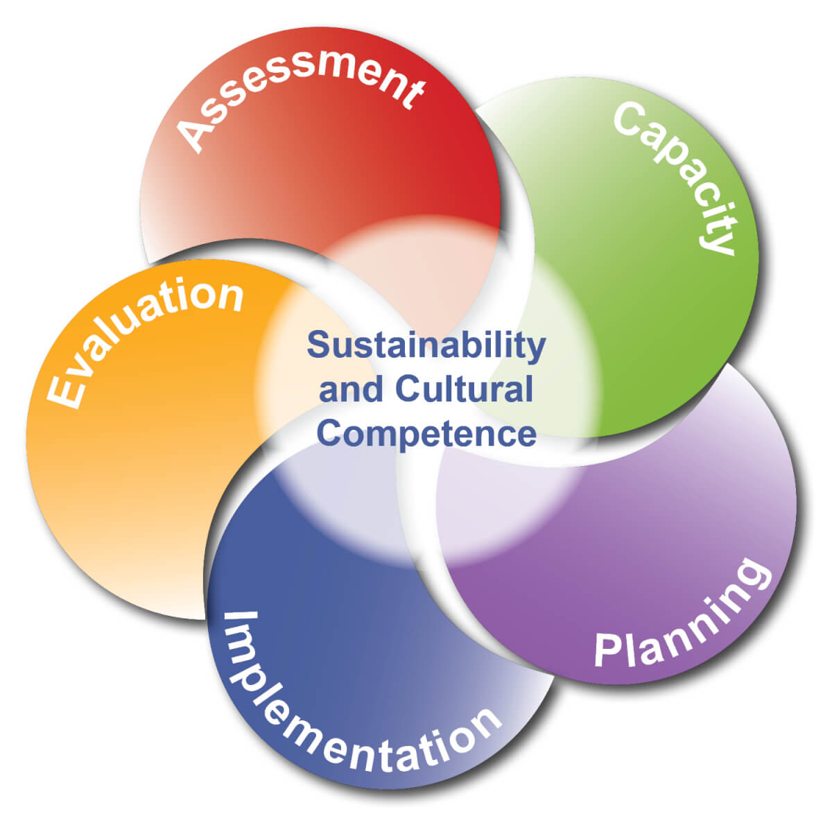 Sustainability And Cultural Competence