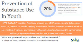 Prevention Committee Inforgraphic Of Services
